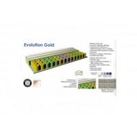 Evolution Gold