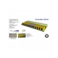 Evolution Silver